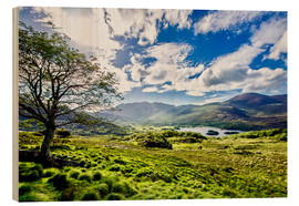 Cuadro de madera  Lake of Killarney - Daniel Heine