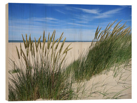 Cuadro de madera  thriving beach grass in the dunes - Susanne Herppich