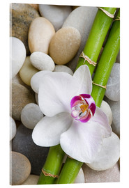 Metacrilato  Bamboo and orchid - Andrea Haase Foto