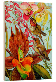 Cuadro de madera  Exotic birds on orchids
