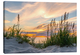 Lienzo  Beach of the Baltic Sea during Sunset - Markus Ulrich