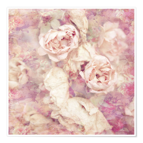 Póster Faded roses