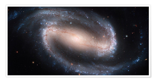 Póster Barred Spiral Galaxy NGC 1300