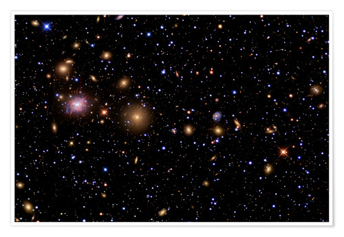 Póster The Perseus Galaxy Cluster