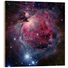 Cuadro de madera  The Orion Nebula - Robert Gendler