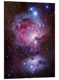 Aluminio-Dibond  the Orion Nebula - Robert Gendler
