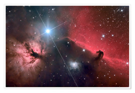 Póster The Horsehead Nebula