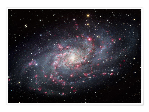 Póster The Triangulum Galaxy