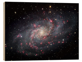Cuadro de madera  The Triangulum Galaxy - Robert Gendler