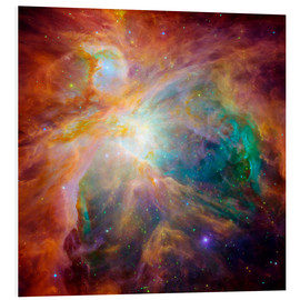 Forex  The Orion Nebula - Stocktrek Images