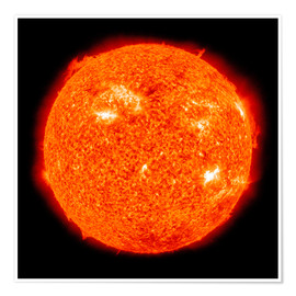 Póster Solar activity on the Sun