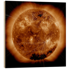 Cuadro de madera  Magnetic field lines on the Sun - Stocktrek Images