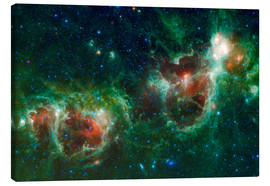 Lienzo  Infrared mosaic of the Heart and Soul nebula - Stocktrek Images