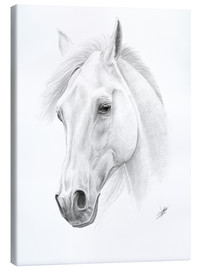 Lienzo  Horse drawing - Christian Klute