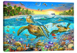 Lienzo  Turtle Cove - Adrian Chesterman