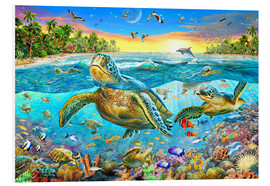 Cuadro de PVC  Turtle Cove - Adrian Chesterman
