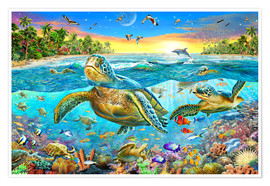 Póster  Turtle Cove - Adrian Chesterman