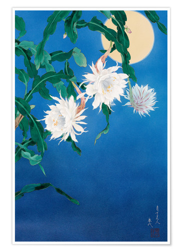 Póster Moon Flower