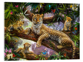 Cuadro de metacrilato  Tree Top Leopard Family - Jan Patrik Krasny