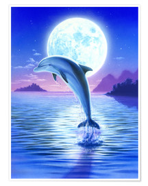 Póster  Day of the dolphin - midnight - Robin Koni