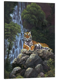 Cuadro de aluminio  Tiger waterfall - Chris Hiett