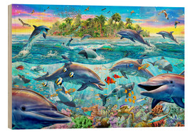 Madera  Dolphin Reef - Adrian Chesterman