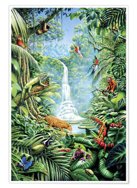 Póster  Save the rainforest - Gareth Williams