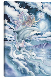 Lienzo  Wish upon a dolphin star - Jody Bergsma