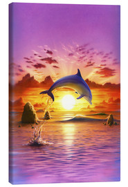 Lienzo  Day of the dolphin - sunset - Robin Koni