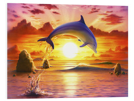 Cuadro de PVC  Day of the dolphin - sunset - Robin Koni