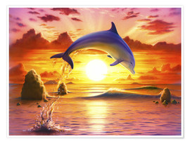 Póster  Day of the dolphin - sunset - Robin Koni