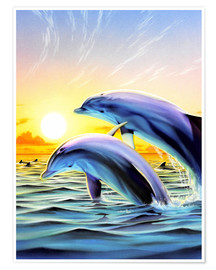 Póster Dolphin duo