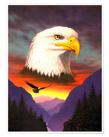 Póster  Eagle - Chris Hiett