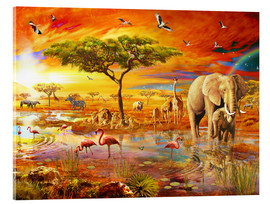 Metacrilato  Savanna Pool - Adrian Chesterman
