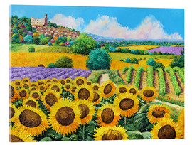 Cuadro de metacrilato  Vineyards and sunflowers in Provence - Jean-Marc Janiaczyk