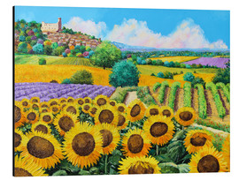 Cuadro de aluminio  Vineyards and sunflowers in Provence - Jean-Marc Janiaczyk