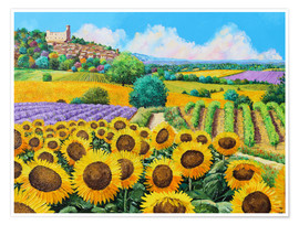 Póster  Vineyards and sunflowers in Provence - Jean-Marc Janiaczyk