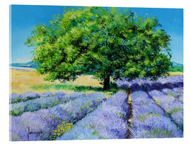 Jean-Marc Janiaczyk - Tree and Lavenders