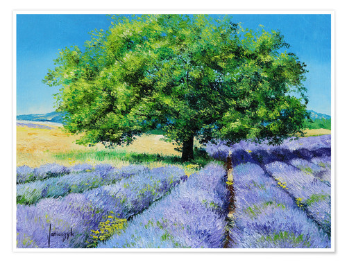 Póster Tree and Lavenders