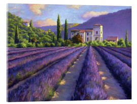 Jay Hurst - Lavender field with Abbey