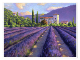 Póster  Lavender field with Abbey - Jay Hurst