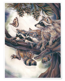 Póster  Raccoons and butterfly - Jody Bergsma
