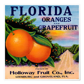 Póster Florida Oranges and Grapefruit