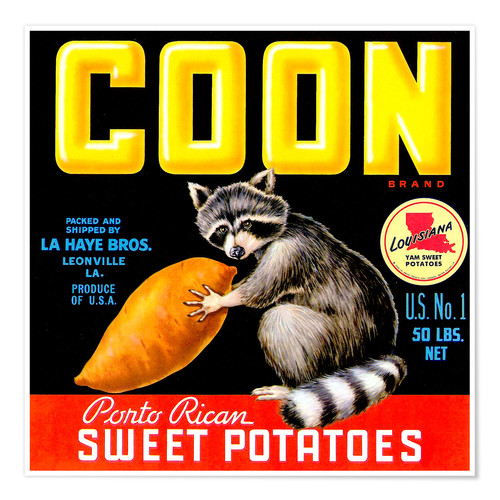 Póster Coon
