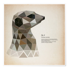 Póster  fig4 Polygon meerkat  square - Labelizer