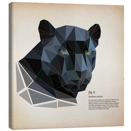 Lienzo  fig6 polygon Panther square - Labelizer