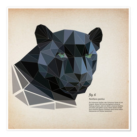 Póster fig6 polygon Panther square