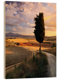 Madera  Sunset over Val d'Orcia, Tuscany - Matteo Colombo