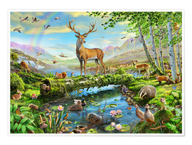 Póster  24402 Wildlife Splendor UK - Adrian Chesterman