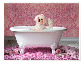 Póster  Pink Bath - Lisa Jane